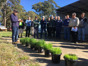 Hay will pay for South West farmers