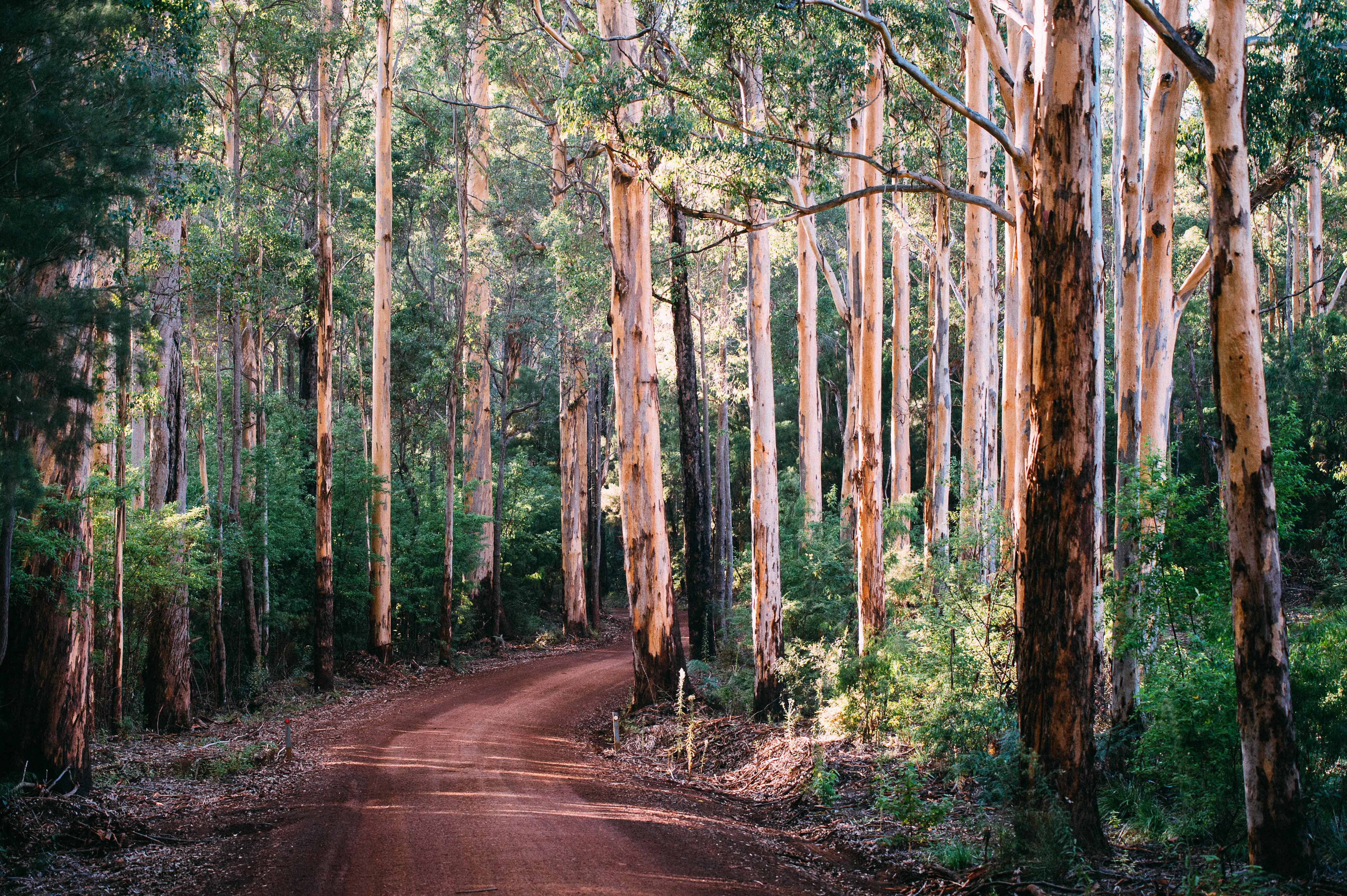 WA Government shows support for SW landcare