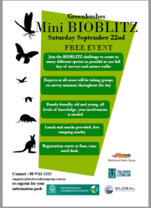 Greenbushes Mini BioBlitz