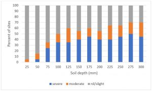 Soil compaction and water repellency on high rainfall beef farms