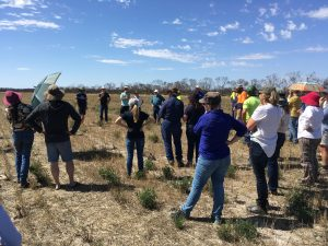 Improving soil health: Notes from the Talkin' Soil Health Conference