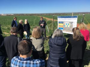 South West Catchments Council applauds launch of ten-year trial to explore regenerative farming