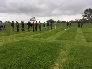 Winter nitrogen on pastures: Trial shows how to reduce feed costs and risk of leaching